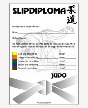 Slipdiploma judo
